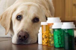 Группа лекарств для лечения поноса