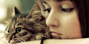 Подозреваете у кошки жар? Узнайте, как правильно измерить ей температуру